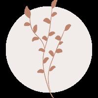 The Borrowed Branch Logo